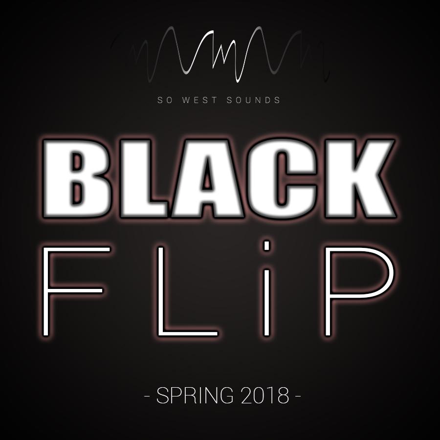 ARTIST: BlackFlip