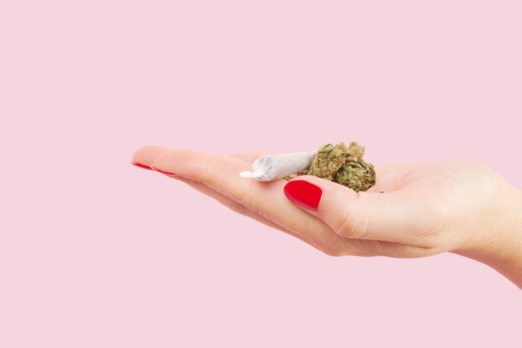 Cannabis for wellness joint and bud in hand