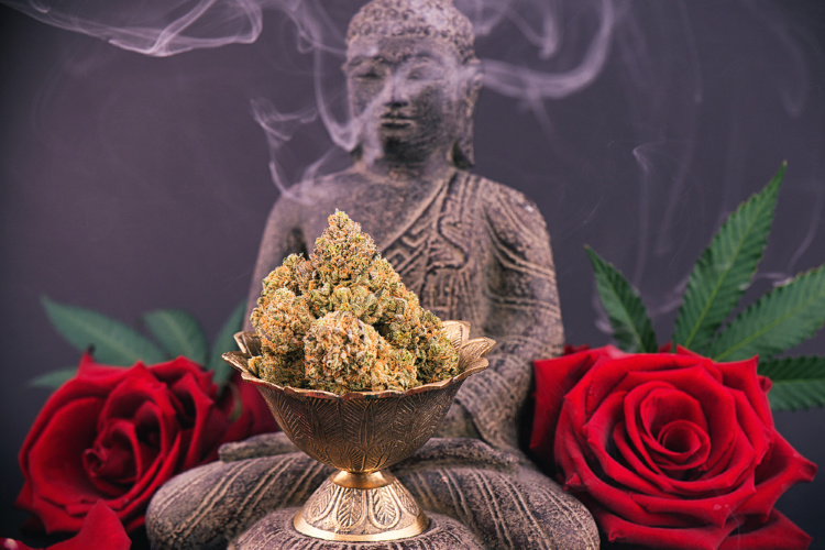 Meditating while high cannabis in front of buddha