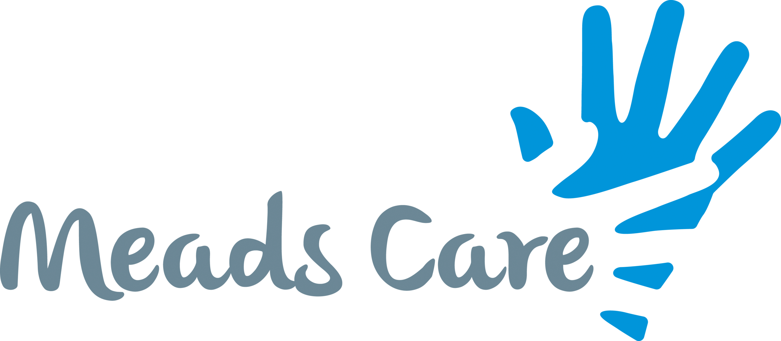 MEADS CARE Logo RGB.png