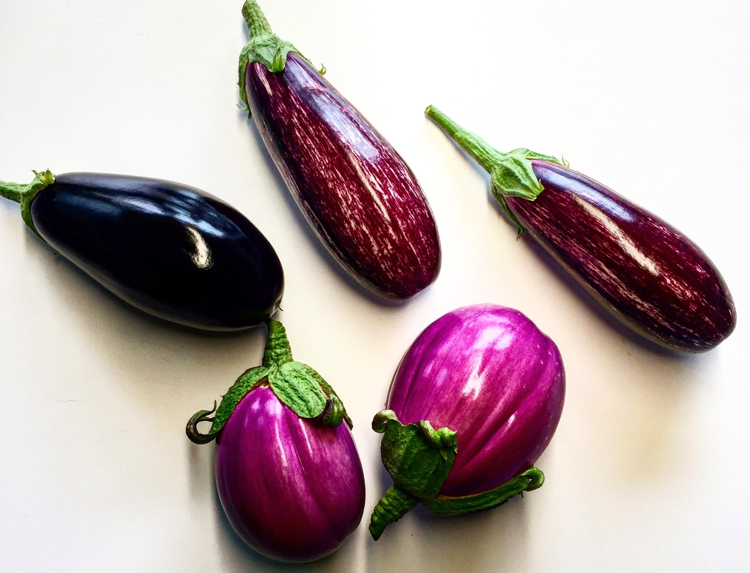 FRIScHE PRODUKTE - Ermöglicht Ernte und Zubereitung der Lebensmittel 'vor-Ort' und garantiert damit hohe Qualität in Frische und Geschmack