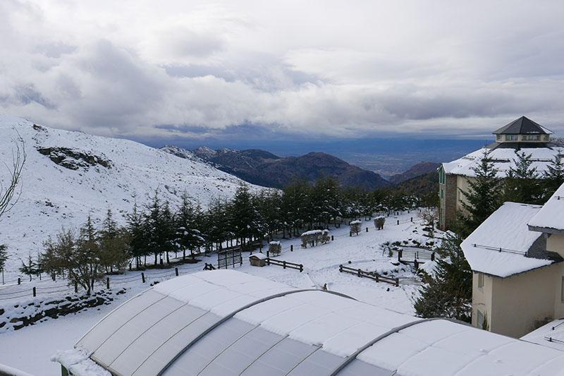 Go skiing in the Sierra Nevada