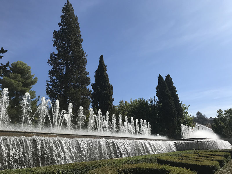 City gardens and parks