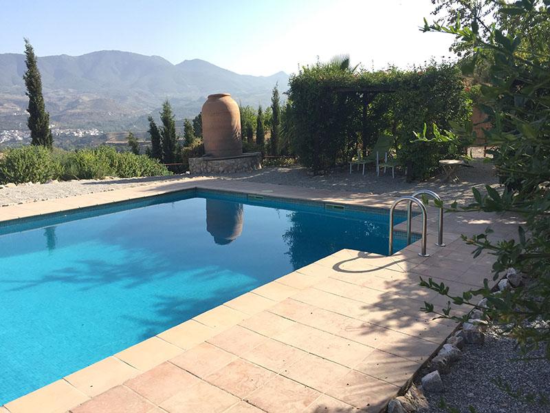the pool 1 copy.jpg