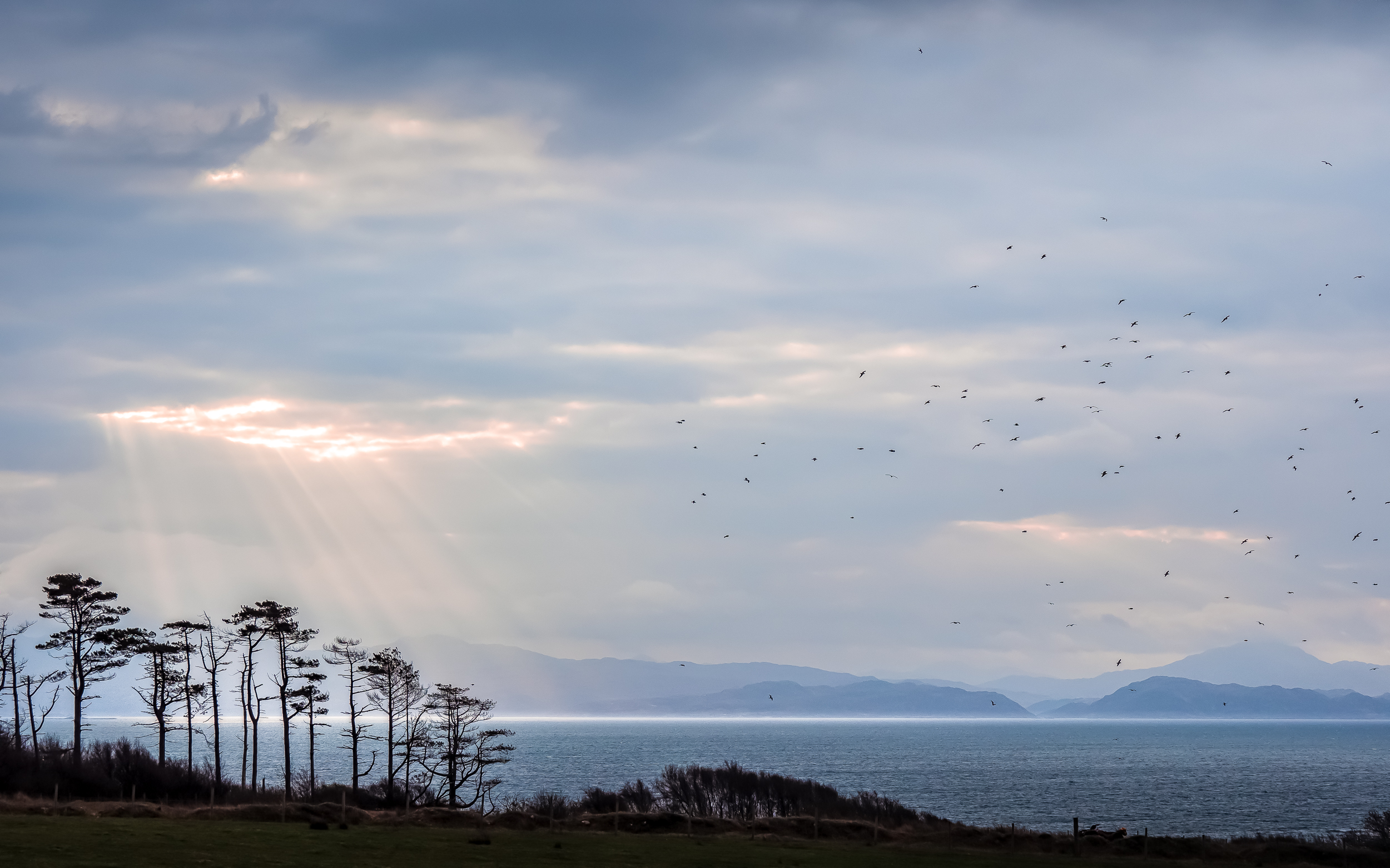 - On day three you can enjoy the full weather experience with a cup of coffee on the deck of The Amazing Eigg Shed…