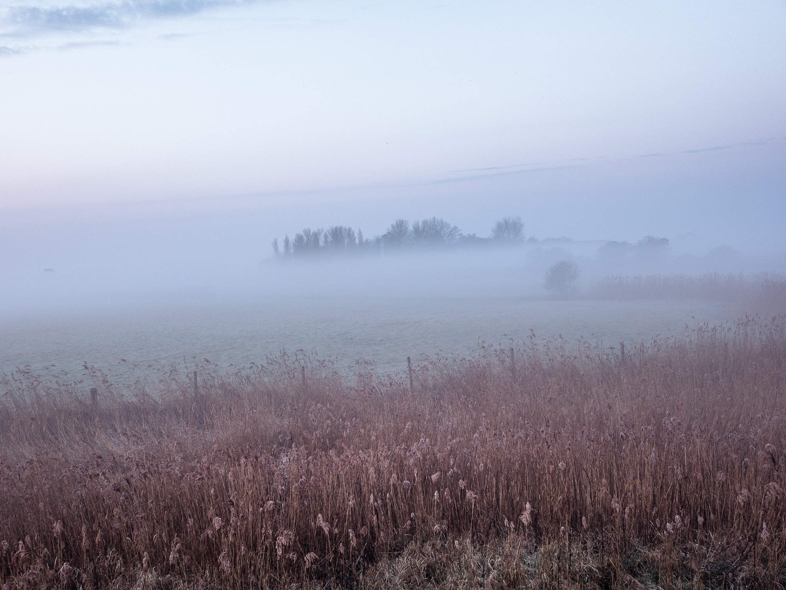 - Turning the other way we enjoy the view to the south-east with a low sun defining the frost on the reeds.