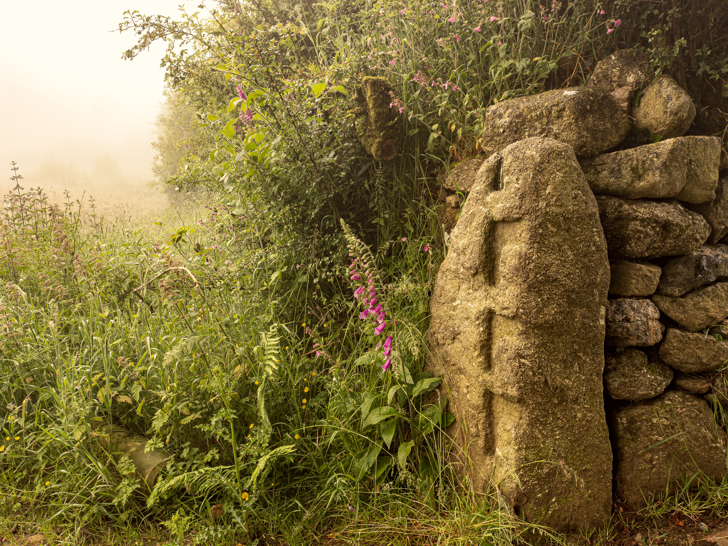 - with an ancient moor stone carved as a gate post. Poles would have been slotted into these grooves. There are quite a few of these around the fringes of the moor, with different patterns of post hanger. Here the stone has been repurposed as a modern gate post.