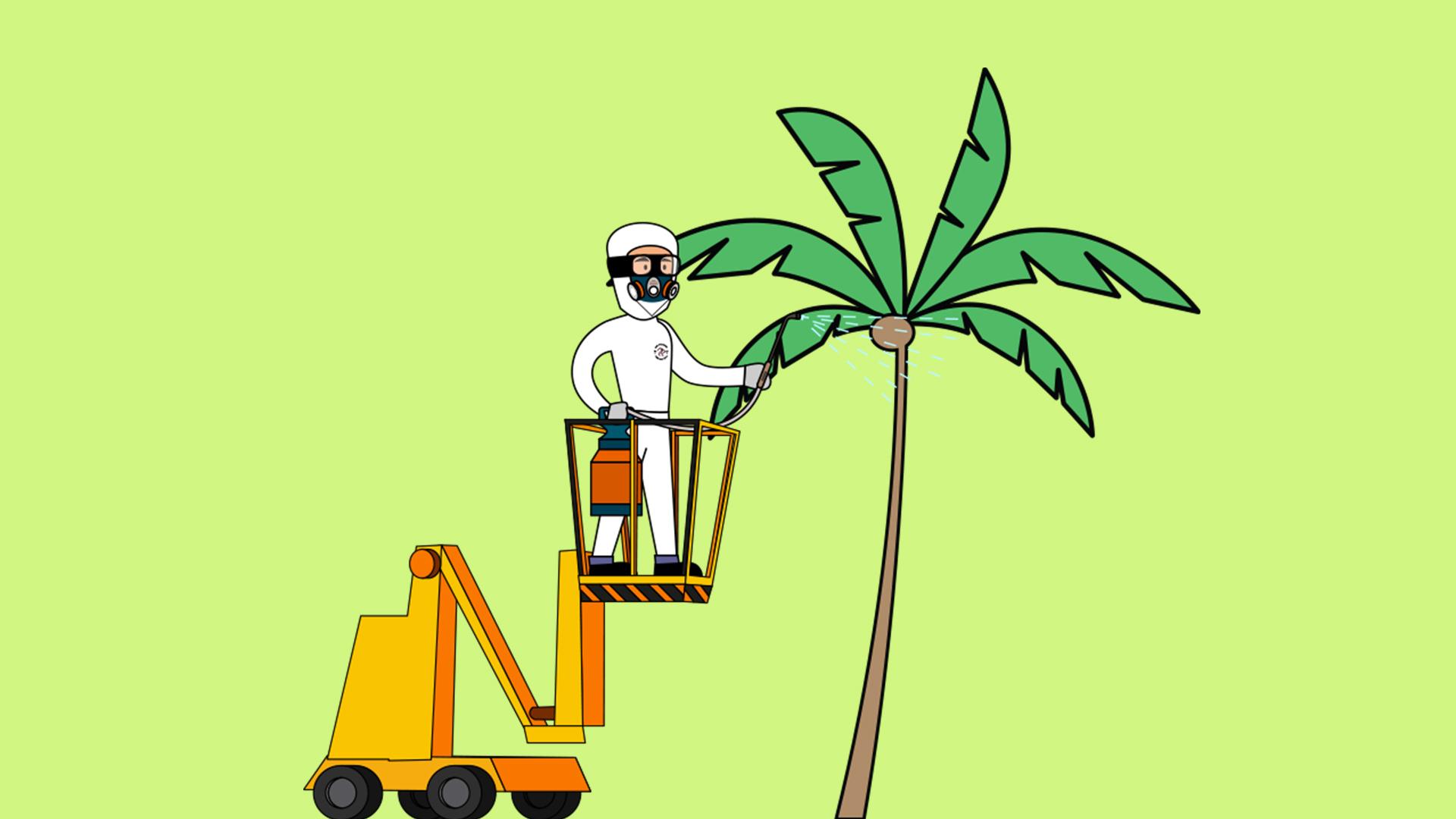 Palm Tree Services.jpg