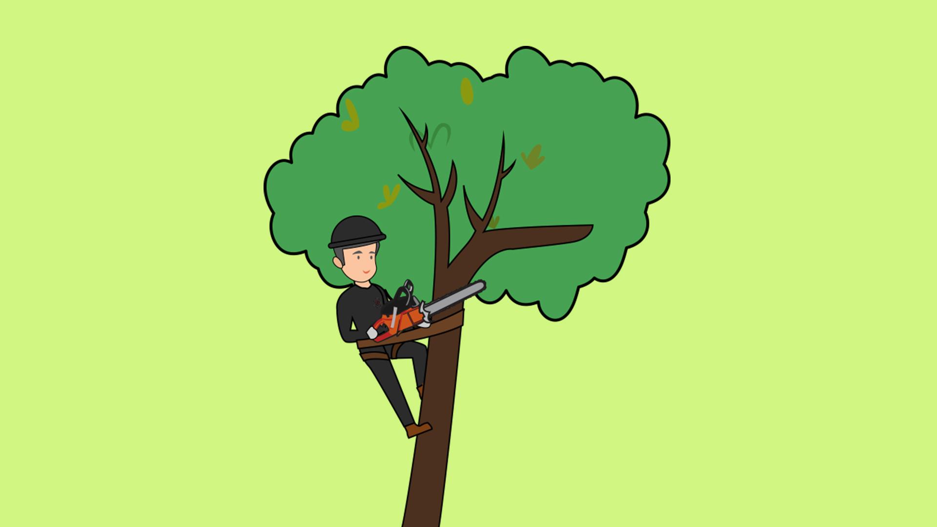 general Tree Services.jpg