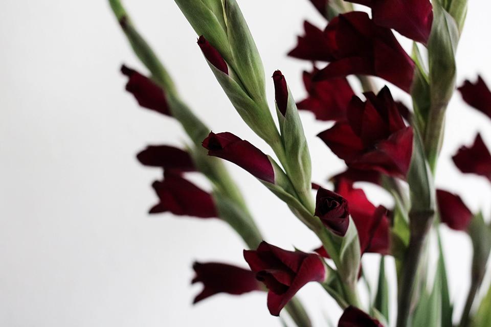 noa-noir-art-interior-home-decor-minimalist-styling-flower-decoration-1.png