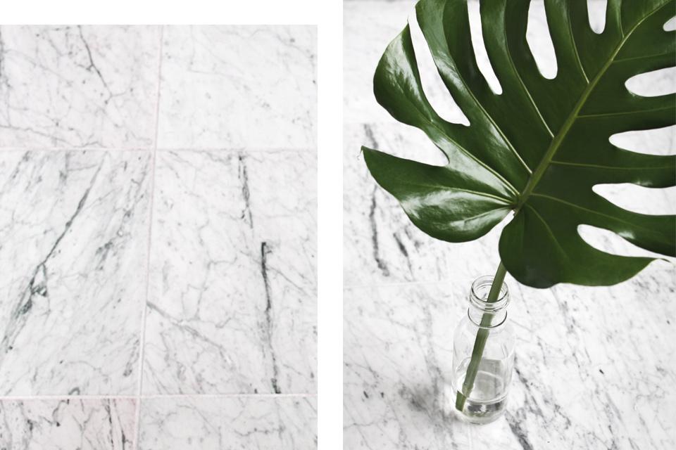 noa-noir-art-interior-home-decor-plants-monstera-deliciosa-decoration-ideas-marble-2.jpg