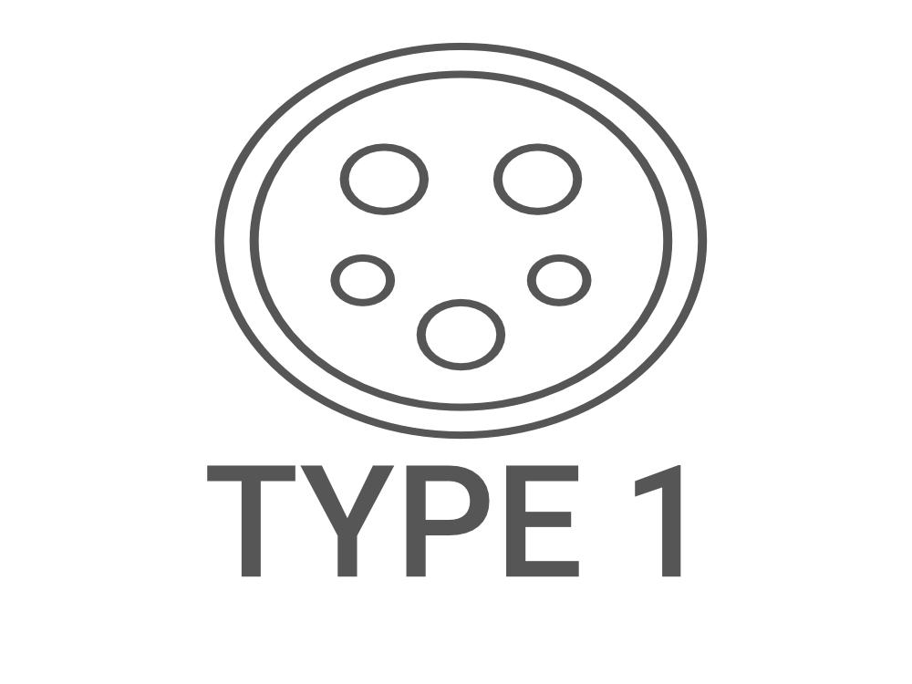 type1.jpg