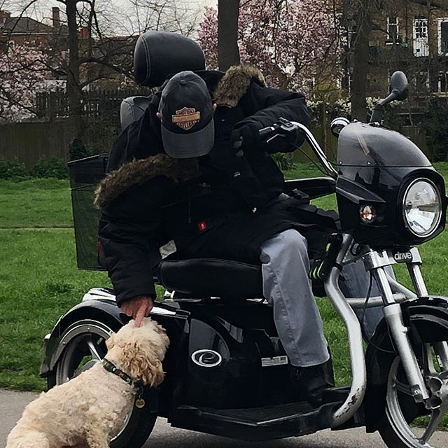 Pets as therapy. The joy in this mans face as he strokes our dog....such a reminder to do little things that bring you joy and that putting some love out, brings it back too #happiful #happiness😊 #brockwellpark #brixton #therapy
