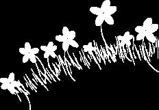 Kukka.png