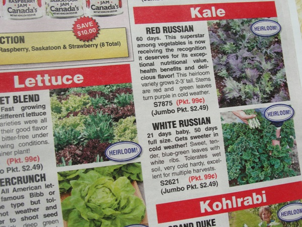 seed catalogue - Copy.JPG