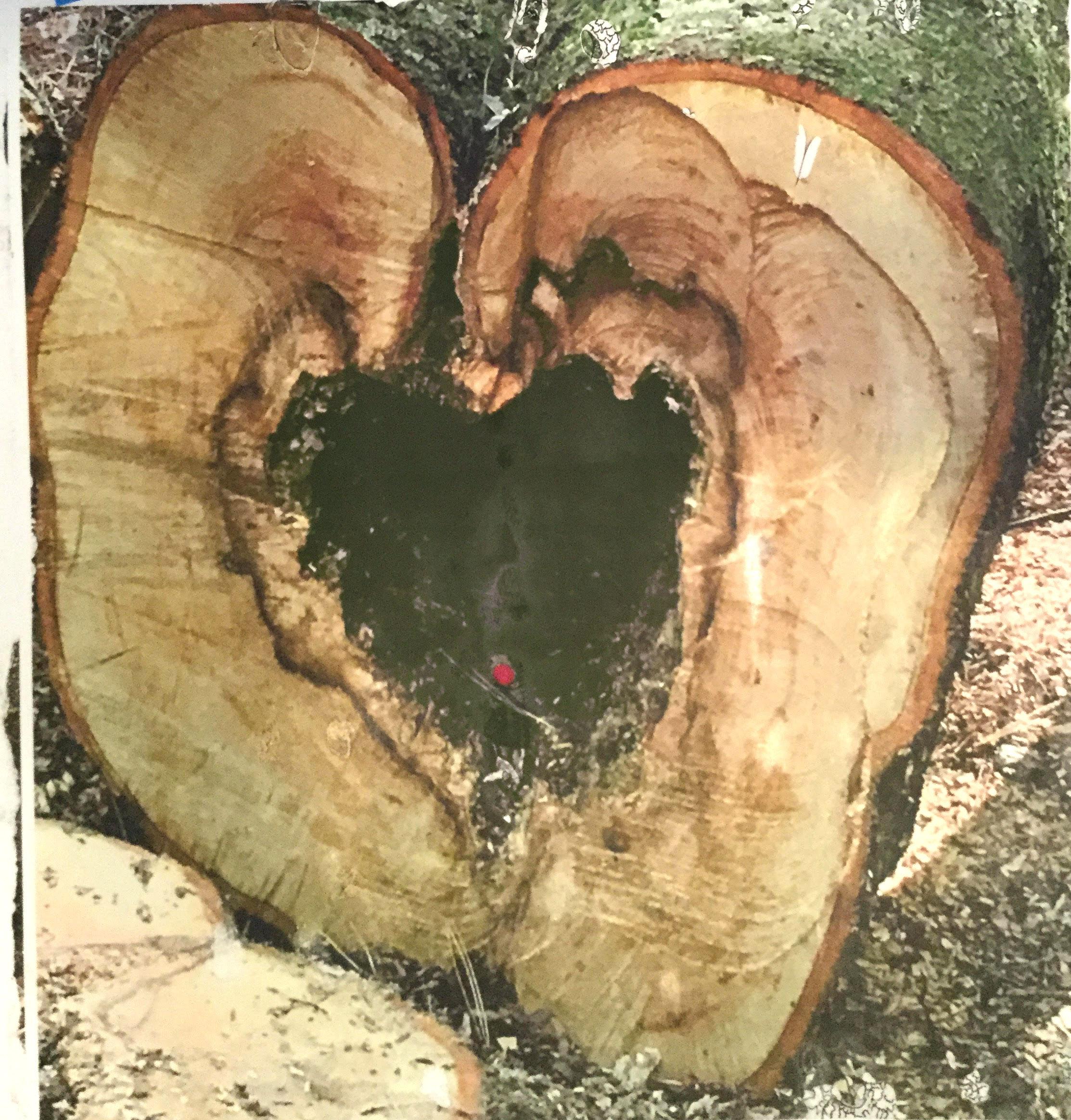 Telltale Heart