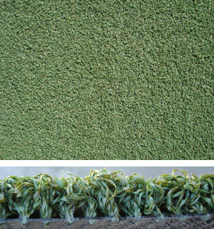 PUTTING GREENS - Enjoy natural looking putting greens in residential and business locations!