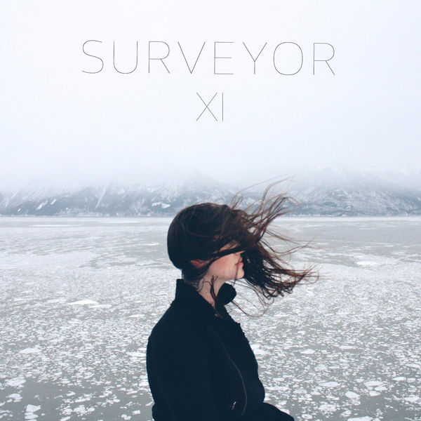 Surveyor - XI.jpg