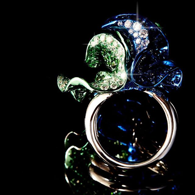 Aquatic plants unfurl as if swaying to the rhythm of waves in the Teal Ring.