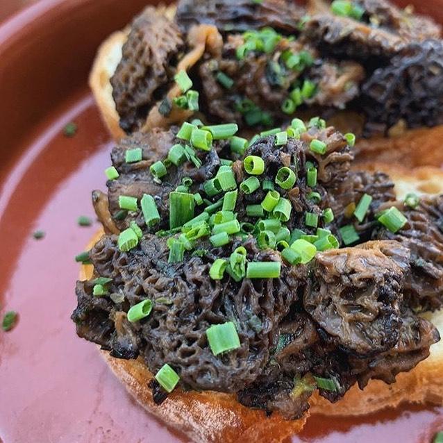 Nothing quite like Idaho mushrooms on the menu!  Photo by @tayloramazing and mushrooms hand foraged by @idahohuntergatherer  #eat #eatrealfood #foodie #tapas #wine #eatwell #yum #pinxtos #pinxtosbar #boisewinebar #eatup #thisisboise #boise #downtown #bedowntown #supper #morels #onlyinidaho #idaho #travel #eatpnw #pnweats #picoftheday #instafood #foodstagram #foraged #foragedfood #foragedfoodie
