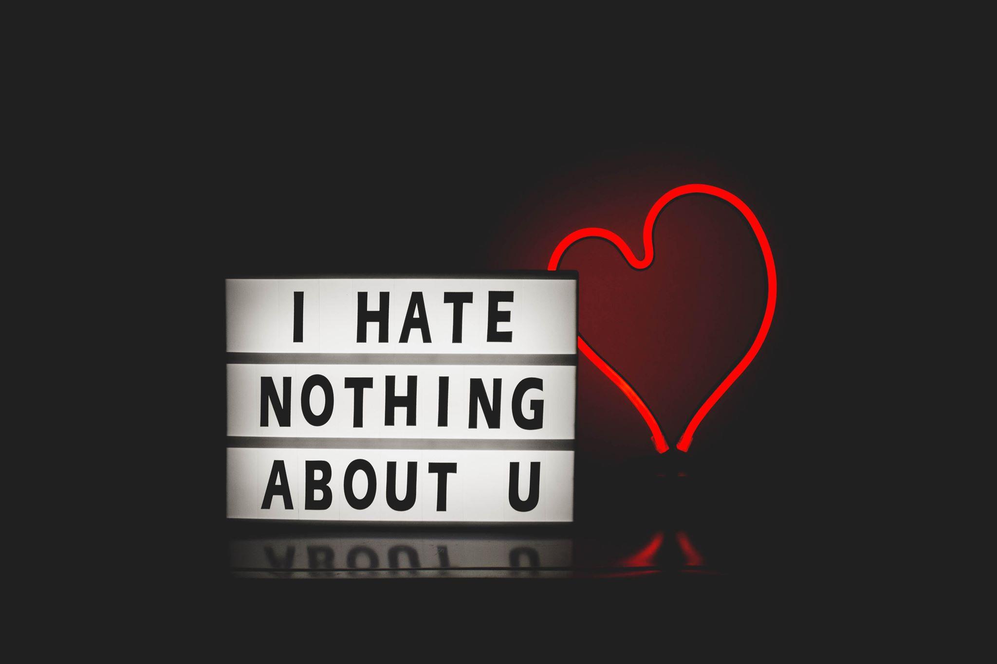 hate nothing.jpg