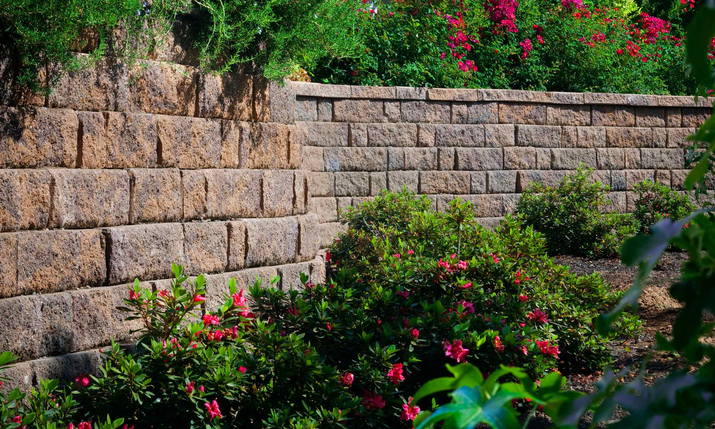 Installation of Retaining Walls and Freestanding Walls in The Bay Area