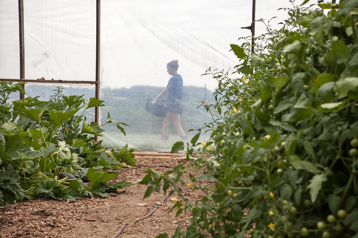 Nora_Crist_carries_farm_produce_250.jpg