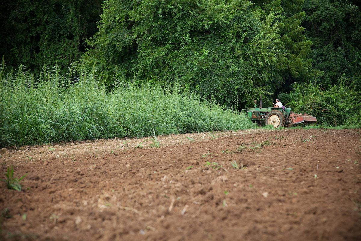 Rich soil that will remain farmland