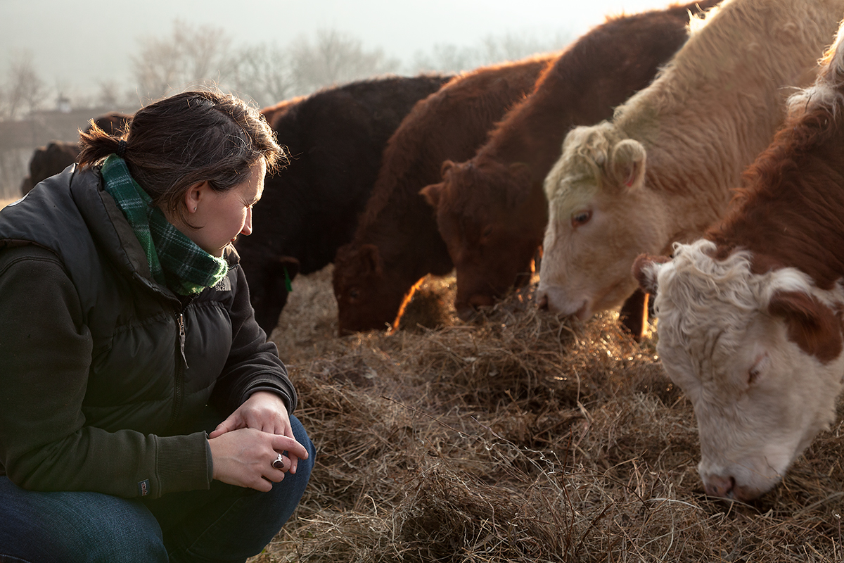 Molly_Peterson_watching_cows_eat_146.jpg
