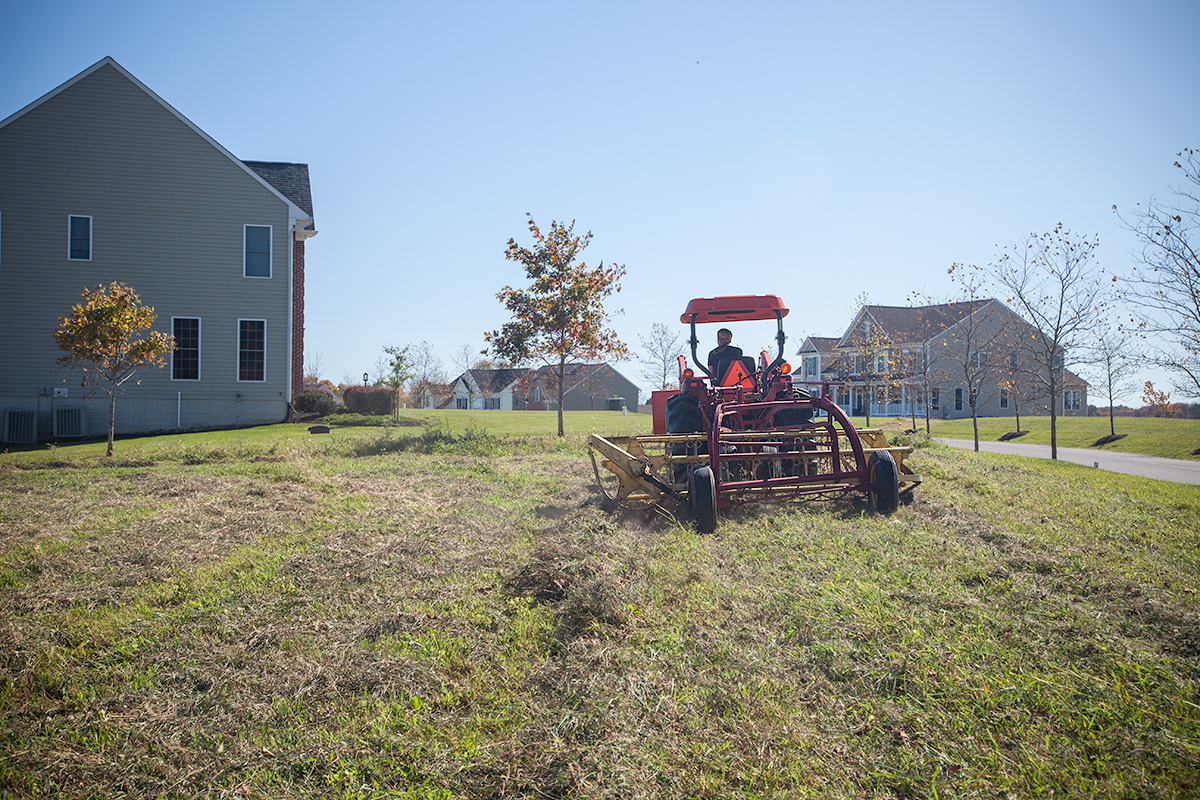 Kelly_Hensing_making_hay_200.jpg