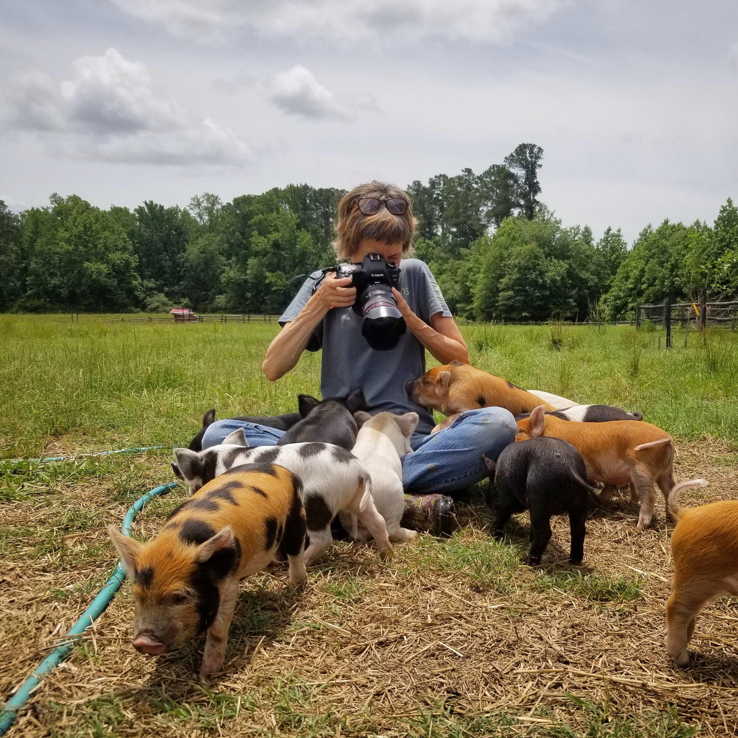 photo by Rachel Herrick of Slow Farm