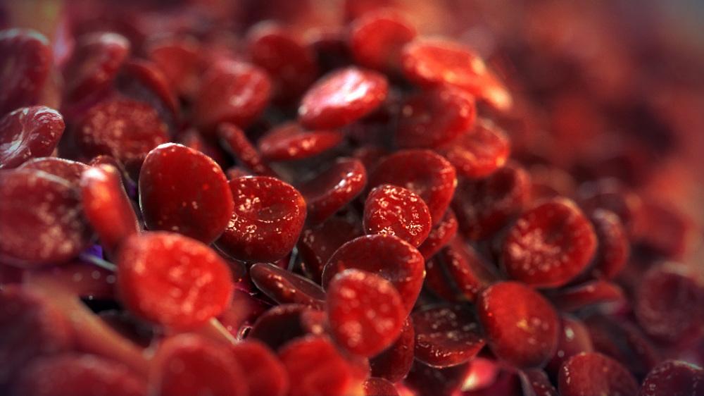 PIR101_Red_Blood_Cells_attracts_Bone_marrow_stageB_01__1000_1000.jpg