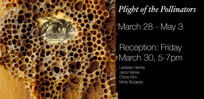 pollinator show.jpg