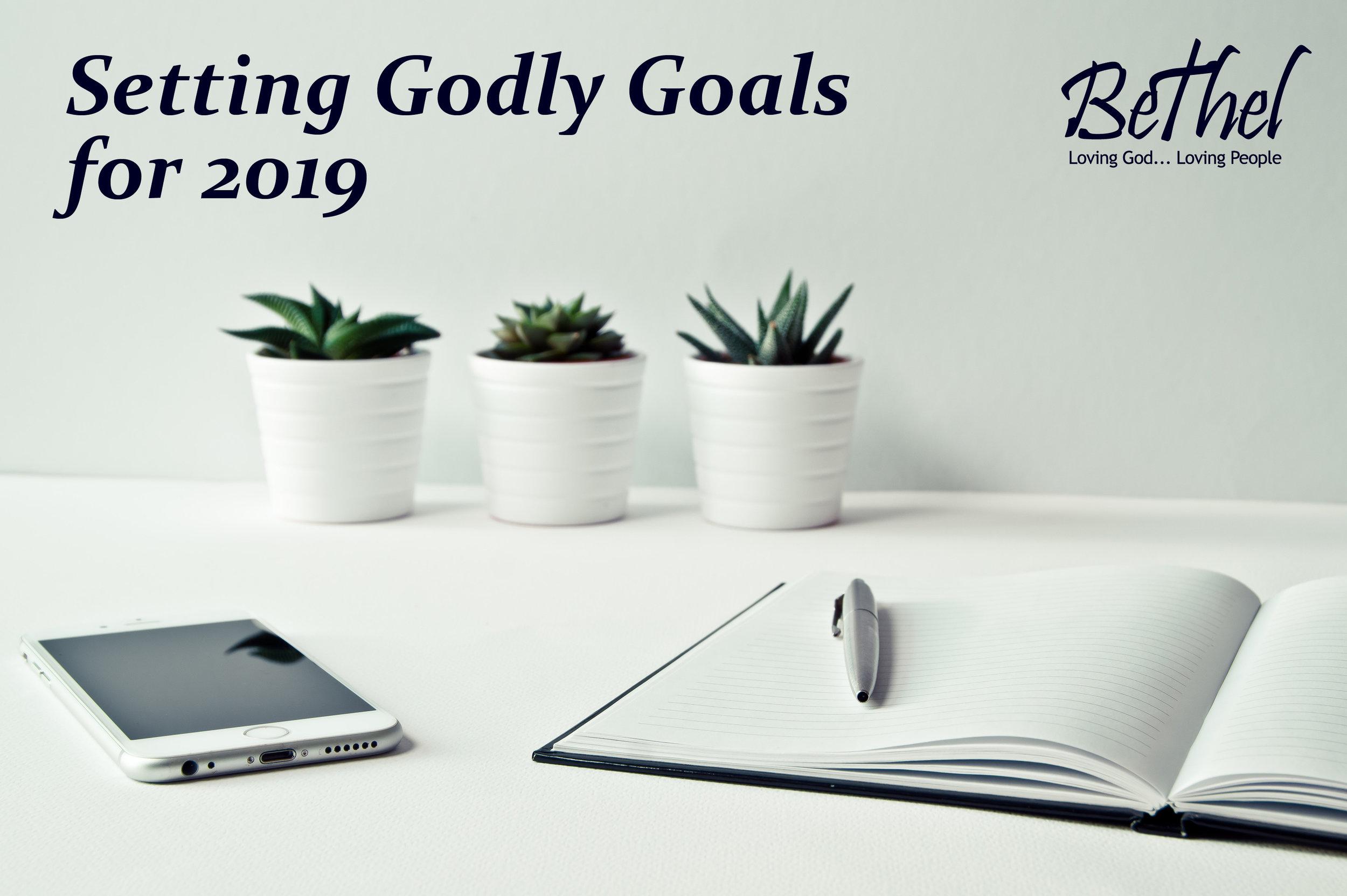 Setting Godly Goals for 2019.jpg