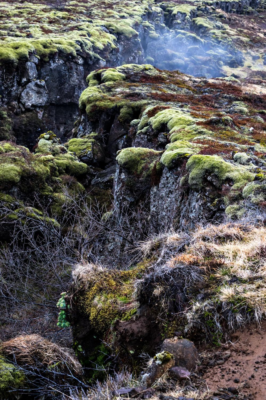 8_20170427-Iceland-_DSC6177-Edit.jpg
