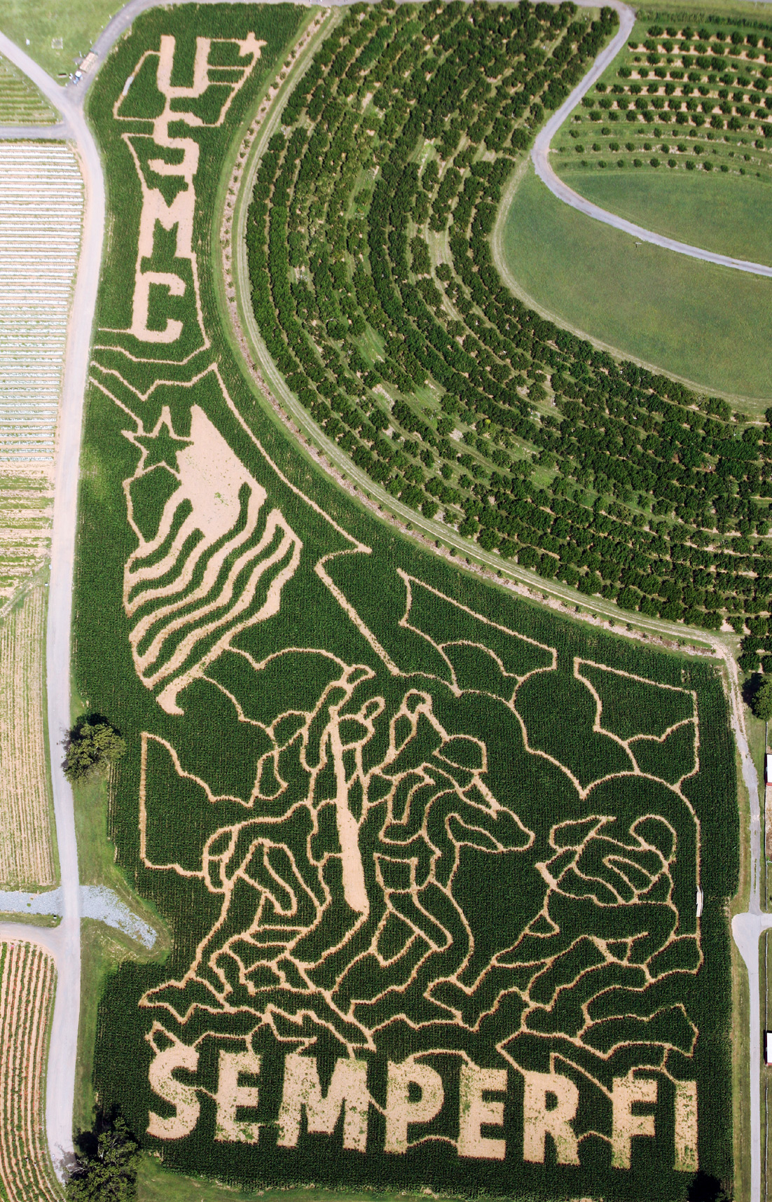 USMC-2011-Corn-Maze.jpg