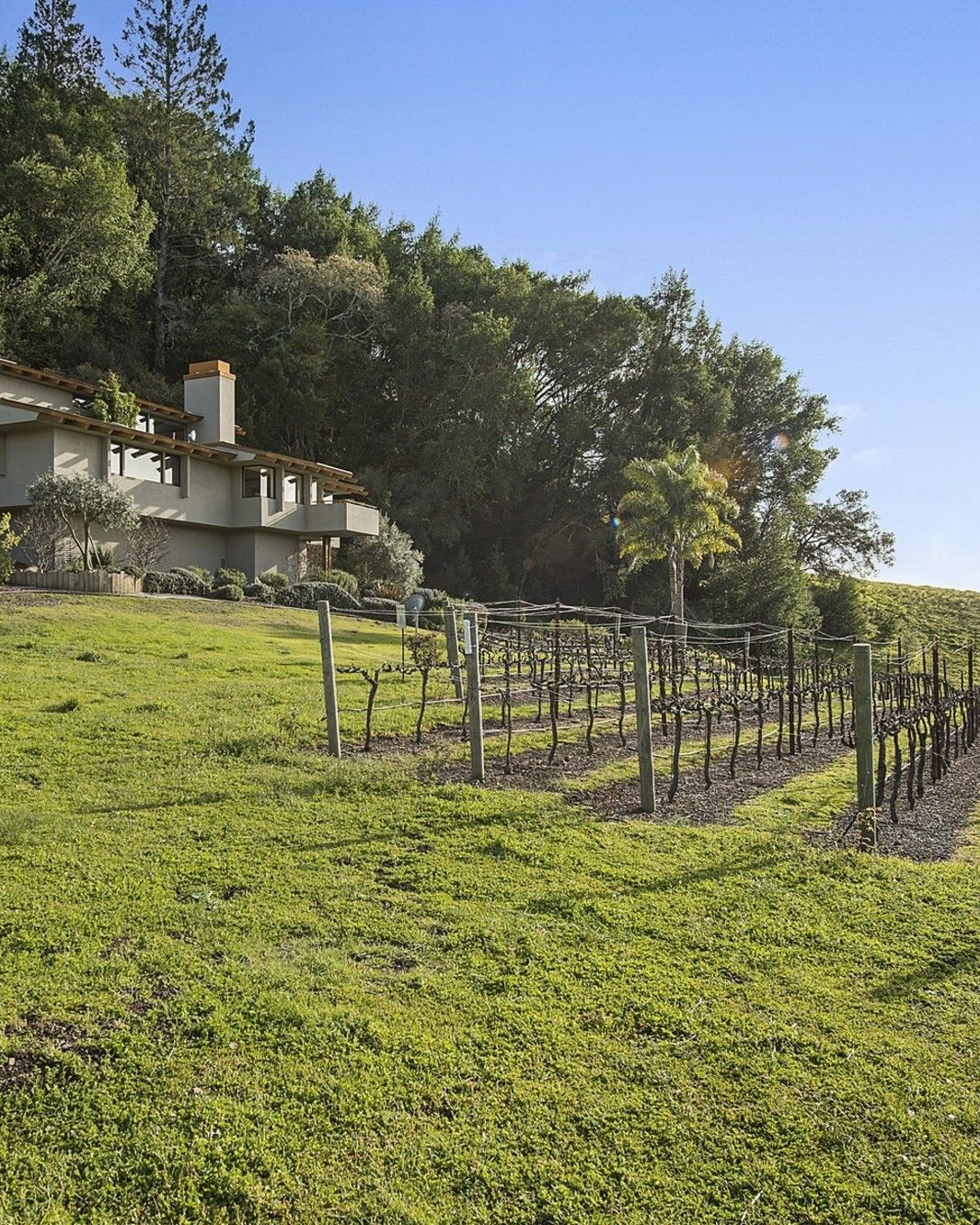 NEW EVENT II - Tuesday, August 28th at 6:30pmCristom Vineyards began a quarter of a century ago as a collaboration between an engineer and a biochemist who each possessed a deep-rooted respect for the land, the natural winemaking process, and Pinot Noir. 25 years later, second-generation winegrower and owner Tom Gerrie leads winemaker Steve Doerner and our tenured viticulture team in tending our Estate vineyards, and producing elegant, dynamic wines, recognizable by our hallmark style of whole-cluster fermentation by native yeasts.Read More