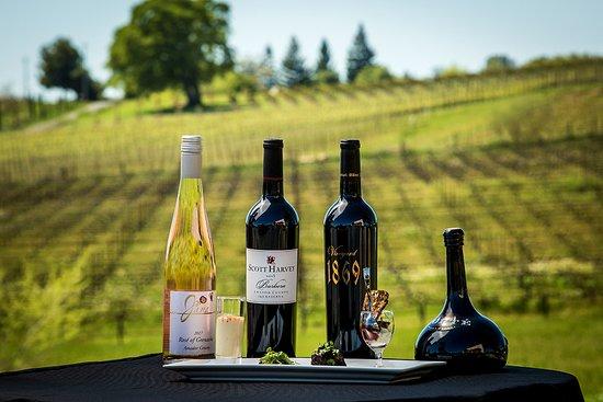 scott-harvey-wines-are.jpg