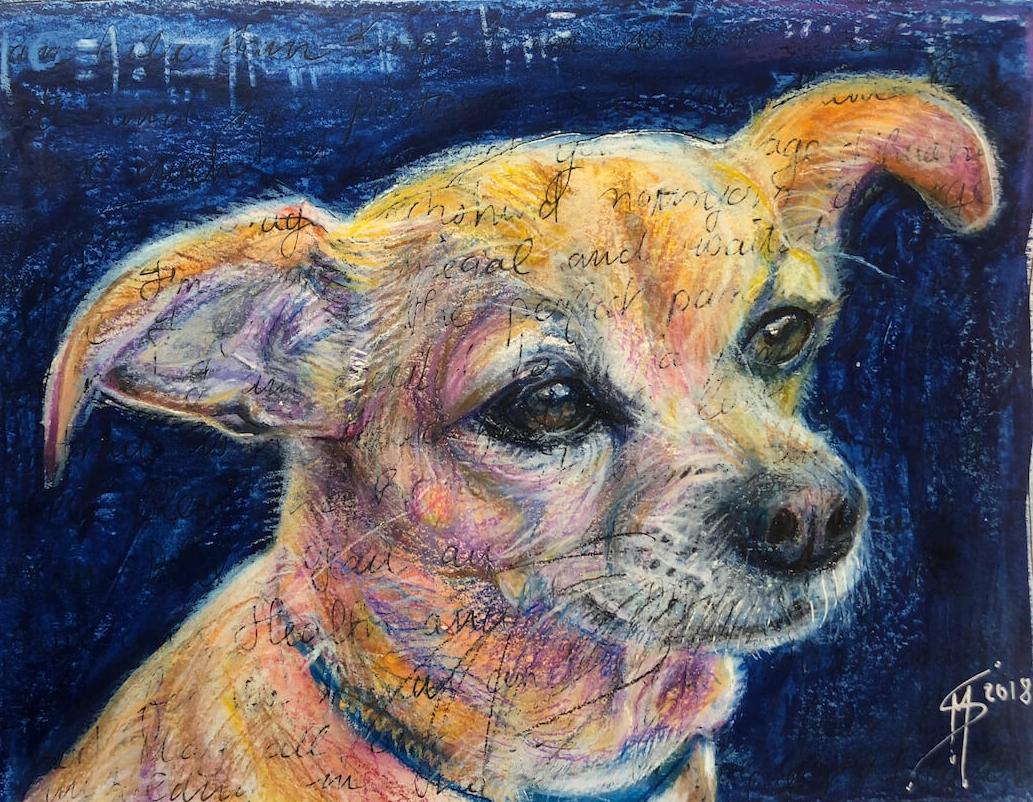Chihuahua_web.JPG