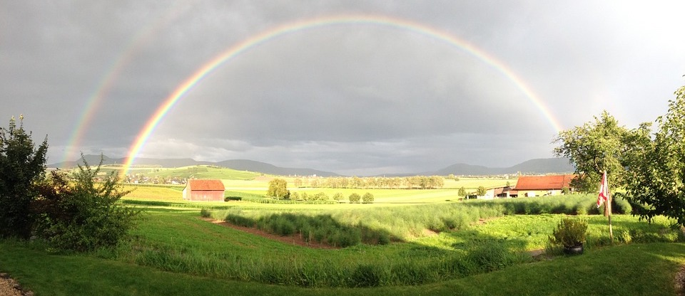 Rainbow sky verdant background (cc0).
