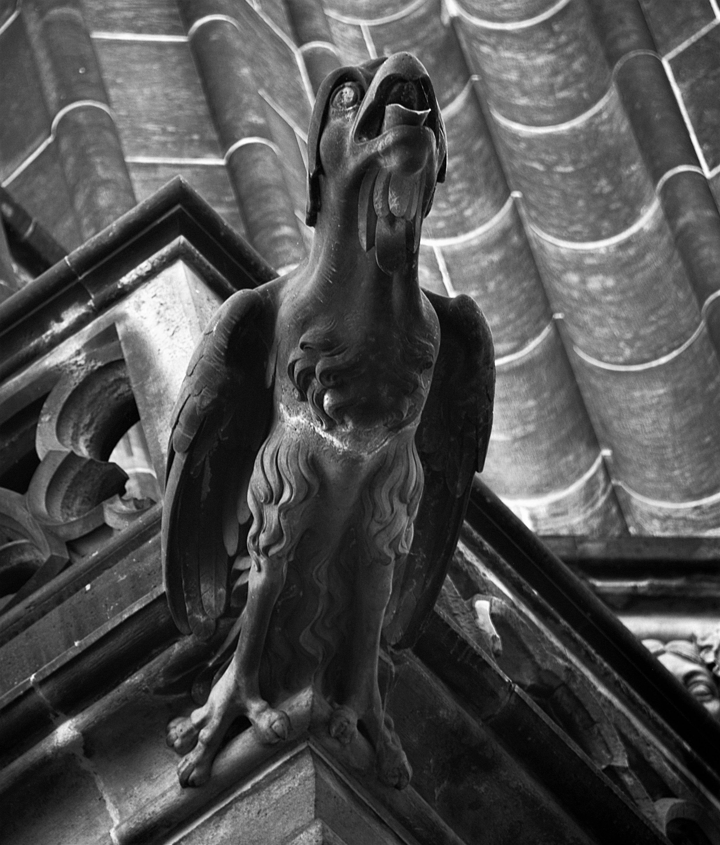 Bird Gargoyle Church
