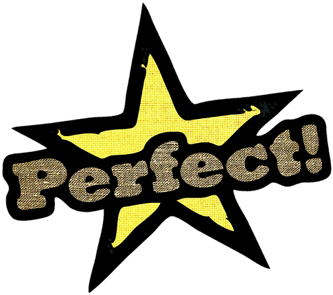 492-4927871_perfection-is-subjective-perfect-10-score-png.png