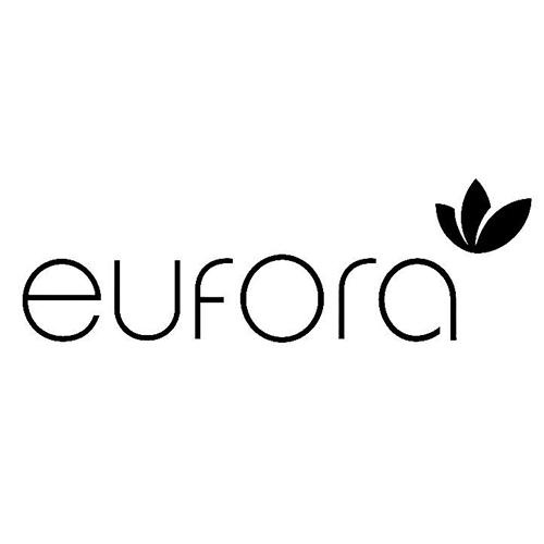 EuforaInternationalLogo.jpg