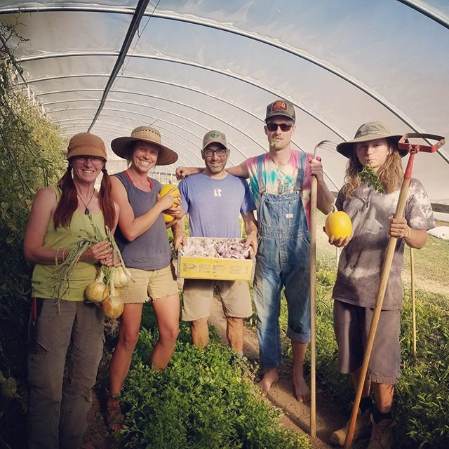 We have a part-time STAFF POSITION open! 👉🏽👉🏽Click on the link in our BIO to go to our website to find out more details👈🏽👈🏽 Do you love good food? 🍅Do you care how the food you eat was grown? 💚Do you like being outside? 🌞Do you like to work hard? ⛏Do you like getting dirty? 👩🏼‍🌾Do you want to learn about growing food and farming? 👨🏻‍🌾If you answered yes to any of those questions and you're looking for a part-time job, check out the website link in the 👉🏽BIO👈🏽 or 👉🏽DM👈🏽 here if you have any questions.