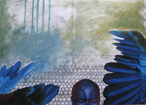 blog maori parrot 2