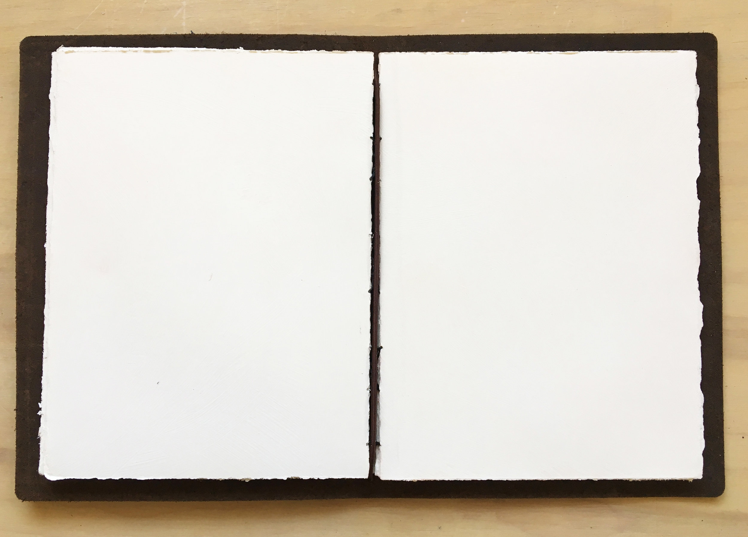 Oh-so-white pages with hand stitched binding by me. The silence is deafening.