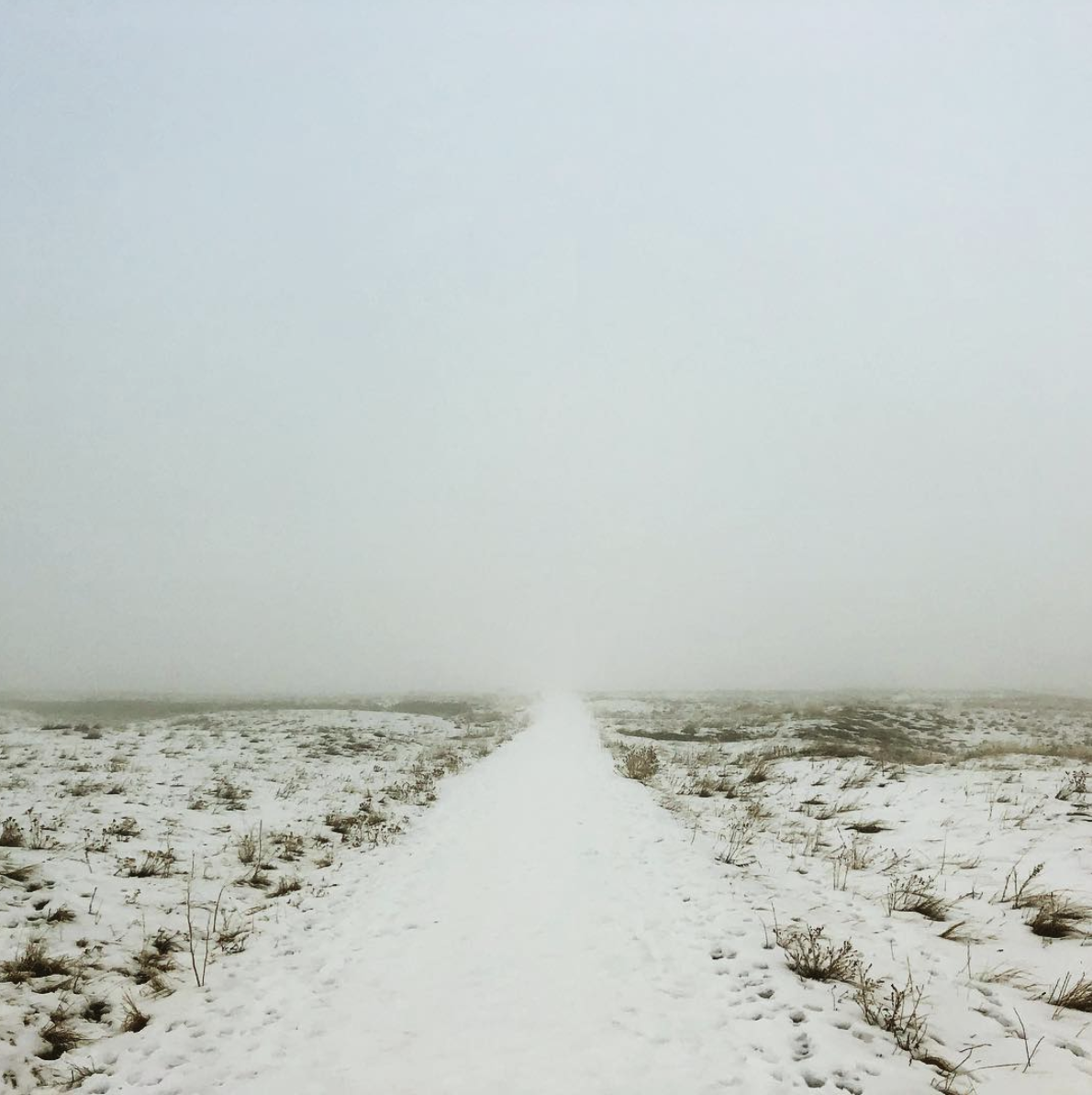 Path in the mist. Photo by ©Amy Guion Clay 2019