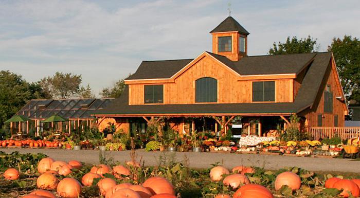 sweet-berry-farm_middletown-ri-26d0c2775056b3a_26d0c458-5056-b3a8-49d78391b5dd92f8.jpg