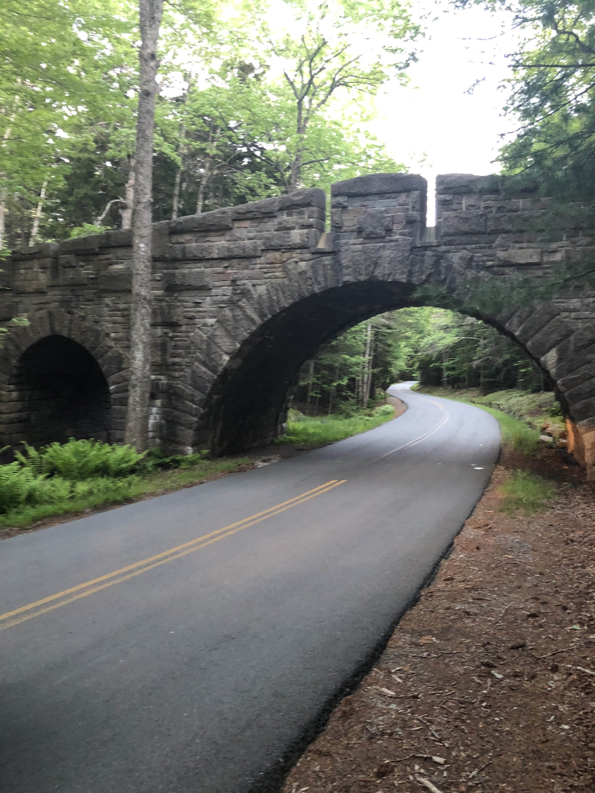 Carriage Roads at Acadia