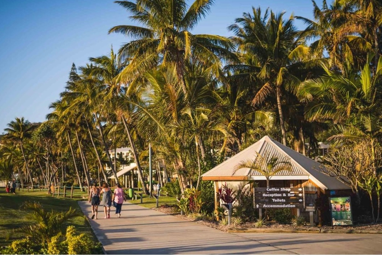 Tangalooma Island Resort - The unspoiled splendor of Moreton Island, wild dolphin feeding, along with the resort's facilities and oh Diablo Alcoholic Ginger Beer.
